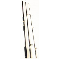 Carbon Put In Top Surf 80 Spinning Rod - 2975-390 - ASM International
