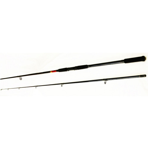 Put In Ultra Strong Carp Spinning Rod - 2357-360 - D.A.M