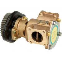 Bronze Flexible Cooling Pump for C1730 Cummins Pump #3866493 - DJ-C1730 - DJ PUMP