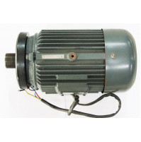 Motor for 8008 Treadmill  - MT8008 - Tecnopro