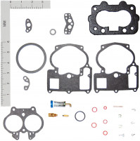 Inboard Marine Carburetor Tune-Up Kits for (R-2) OMC #984487, VOLVO # 841994-7 - WK-19018- Walker products